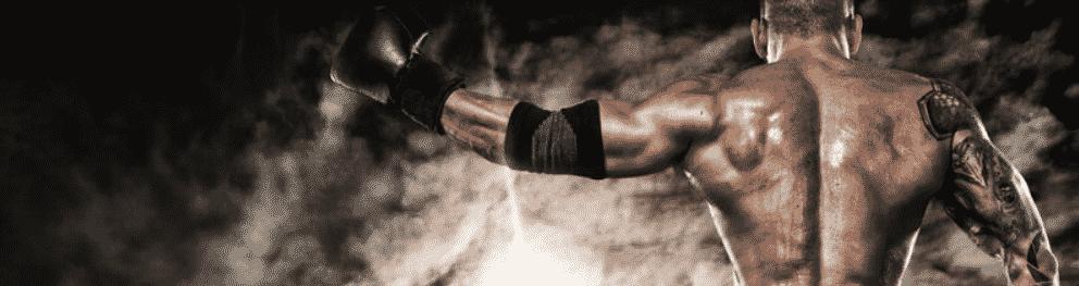 Artes marciais - apostas online